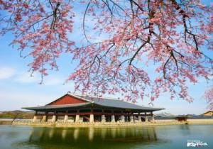 Unique Sic Seoul Tour Program 4 Days 3 Nights